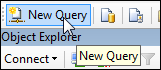 New Query Button